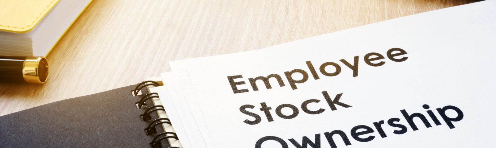 On (Employees) Stock Options and Divorces